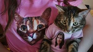 sweaters for cats owner and cat wear hilarious matching t shirts