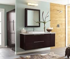 Mirror Wall Cabinet Lowes Bathroom Mirror Cabinet Genersys