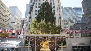 Rockefeller Tree Rockefeller Center Tree Arrives On The Plaza