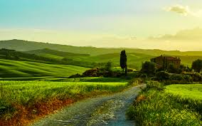 tuscany italy nature landscape fields road flowers wallpaper