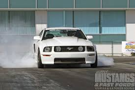 white mustang 2006 performance white 2006 ford mustang au naturel photo image gallery