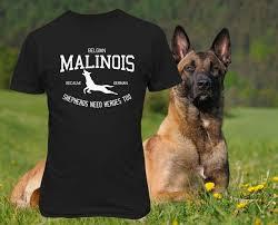 belgian malinois photos belgian malinois because german shepherds need heroes too clay u0027s