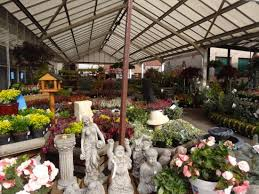 ornaments and tubs picture of fairley s garden centre