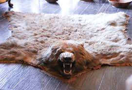 excellent bear skin rug in front of fireplace images ideas tikspor