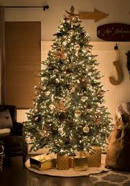 bh noble fir all sparkly and shimmery at night country christmas