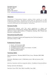 cv sample dubai entertainment professional resumes sample online
