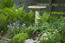 How To Design A Flower Bed How To Design A Bird Friendly Landscape