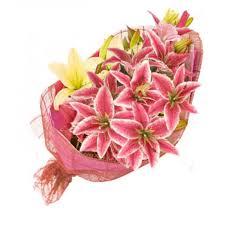 stargazer bouquet stargazer bouquet 16 flower shop in bohol bohol flora