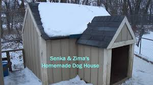 Siberian Husky Brothers Dog House