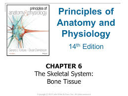 Anatomy And Physiology Pdf Free Download Principles Of Anatomy And Physiology Ppt Video Online Download