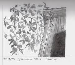 gallery of pencil drawings of landscape nichepoetryandprose