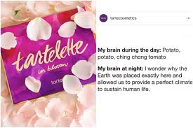 Me Me Me 2 - tarte cosmetics posts racist meme on instagram teen vogue