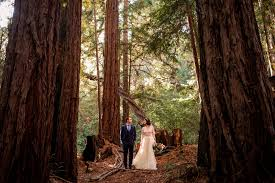redwood forest wedding venue betty jonathan s woodland wedding at the sequoia