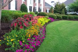 gorgeous easy flower garden for beginners 10 tips to start a