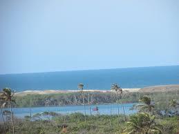 wonderful holiday house on the beach park port beach dunes porto