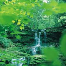 Pennsylvania waterfalls images Waterfalls gorges in pennsylvania usa today jpg
