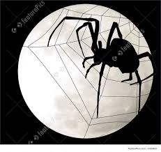 white and and black halloween background spider and web silhouetted against full moon with black background