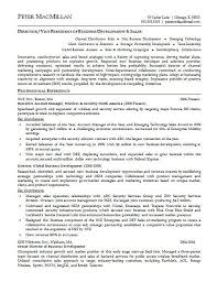 Example Of Executive Resume by Sumptuous Executive Resume Examples 7 Example Cv Resume Ideas