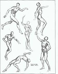 quick sketches from the wooden mannikin ideal proportion