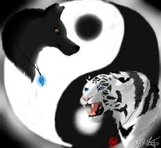 and wolf yin yang by thelonewolfgirl9999 on deviantart