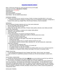 resume format tips resume sles free resumes tips curriculum vitae for sevte