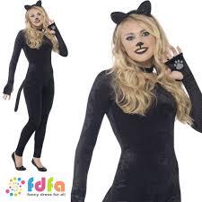 18 diy pet costumes for halloween hgtv wet look cat woman costume