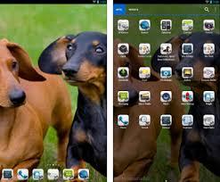 download themes holo launcher dachshund theme nova adw go apk download latest version 4 0 com