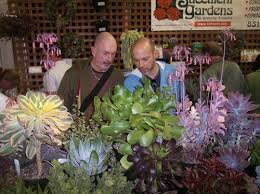 reasons to attend the san francisco flower u0026 garden show