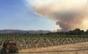 California Wildfires 2007 Environmental Effects by Anr News Releases Agriculture And Natural Resources Blogs