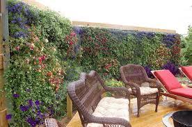 Privacy Garden Ideas 26 Diy Garden Privacy Ideas That Are Affordable