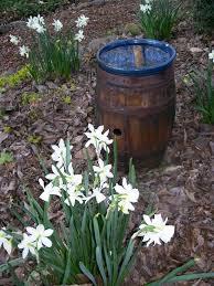 repurposing in the garden hometalk