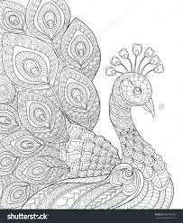 peacock antistress coloring page black and white hand