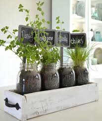 10 indoor garden ideas to cure the winter blues greenery