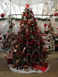 picking the right christmas tree for you and your home the oak leaf