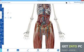 visible body human anatomy atlas free download