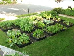 Front Yard Vegetable Garden Ideas How To Make A Vegetable Garden In Your Backyard Attractive Front