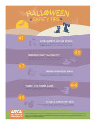 halloween safety tips halloween pet safety tips