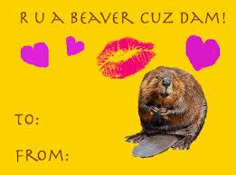 Meme Valentine Cards - valentines day meme cards free calendar