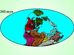 continental drift evolution