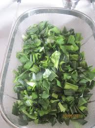 cuisiner les verts de poireaux cuisiner le vert de poireau régime pauvre en calories