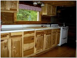 kitchen cabinet door handles with backplate cabinet home