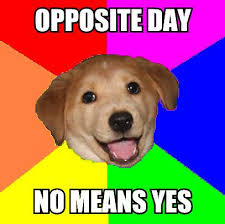 Yes This Is Dog Meme - yes dog meme annesutu
