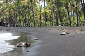 Black Sand Beaches by Where Can I Find