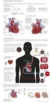 25 best nursing education images on pinterest nursing education