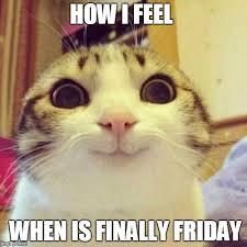 Finally Friday Meme - smiling cat meme imgflip