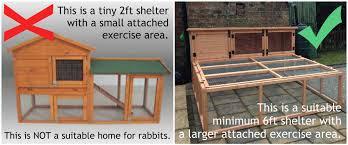 Large Rabbit Hutch With Run Rabbit Housing