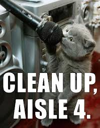 Clean Up Meme - cat astrophe funny cats image 3174904 by yanito on favim com