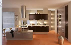 black and bold kitchen designs with white cabinet and brown floor