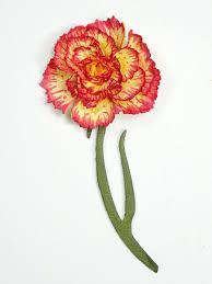 you u0027re so sweet carnation thank you card