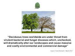 Trees Worldwide Ecology Mitigation Ltd Ppt